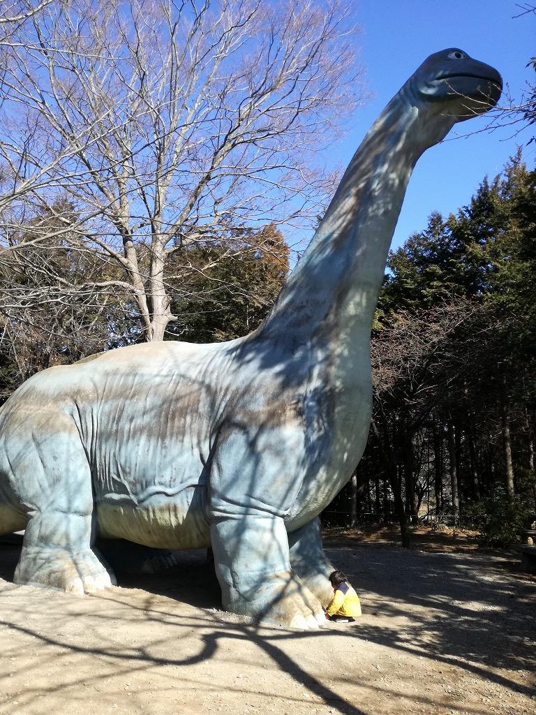 手賀の丘公園の恐竜滑り台